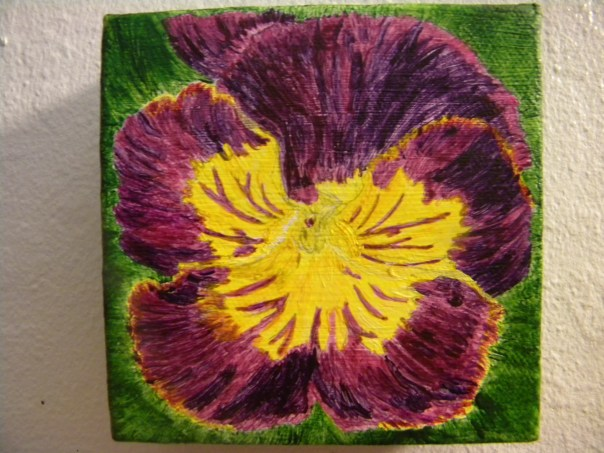 My Purple Pansy