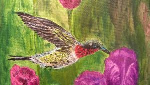 Hummingbird close-up 2