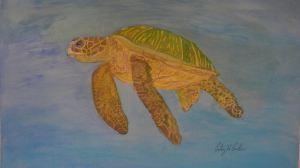 Thomas the Green Sea Turtle (signed)