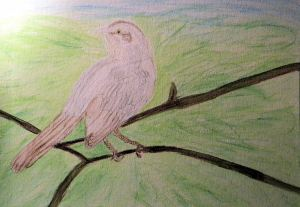 Mockingbird Painting