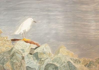Snowy Egret - Mixed Media