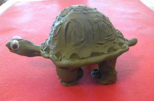 Tortoise 3