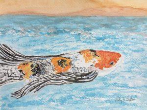 Koi 'fish