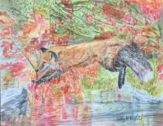 Sherri's Red Fox