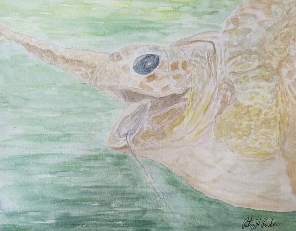 sea-turtle-hooked